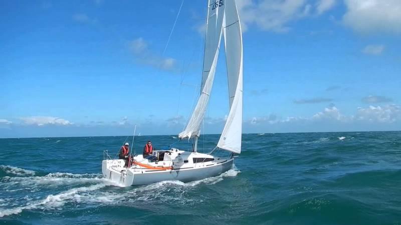 Navalia - Imbarcazione Django 770 2