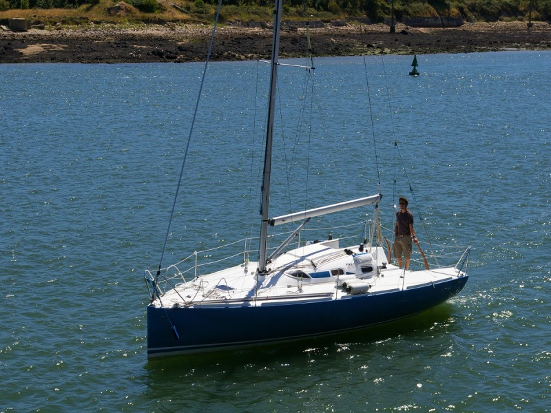 Navalia - Imbarcazione Pogo 8.50 1