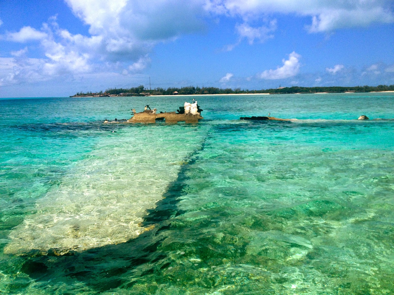 Noleggio Barche Allen's Cay - Navalia | Noleggia un Sogno