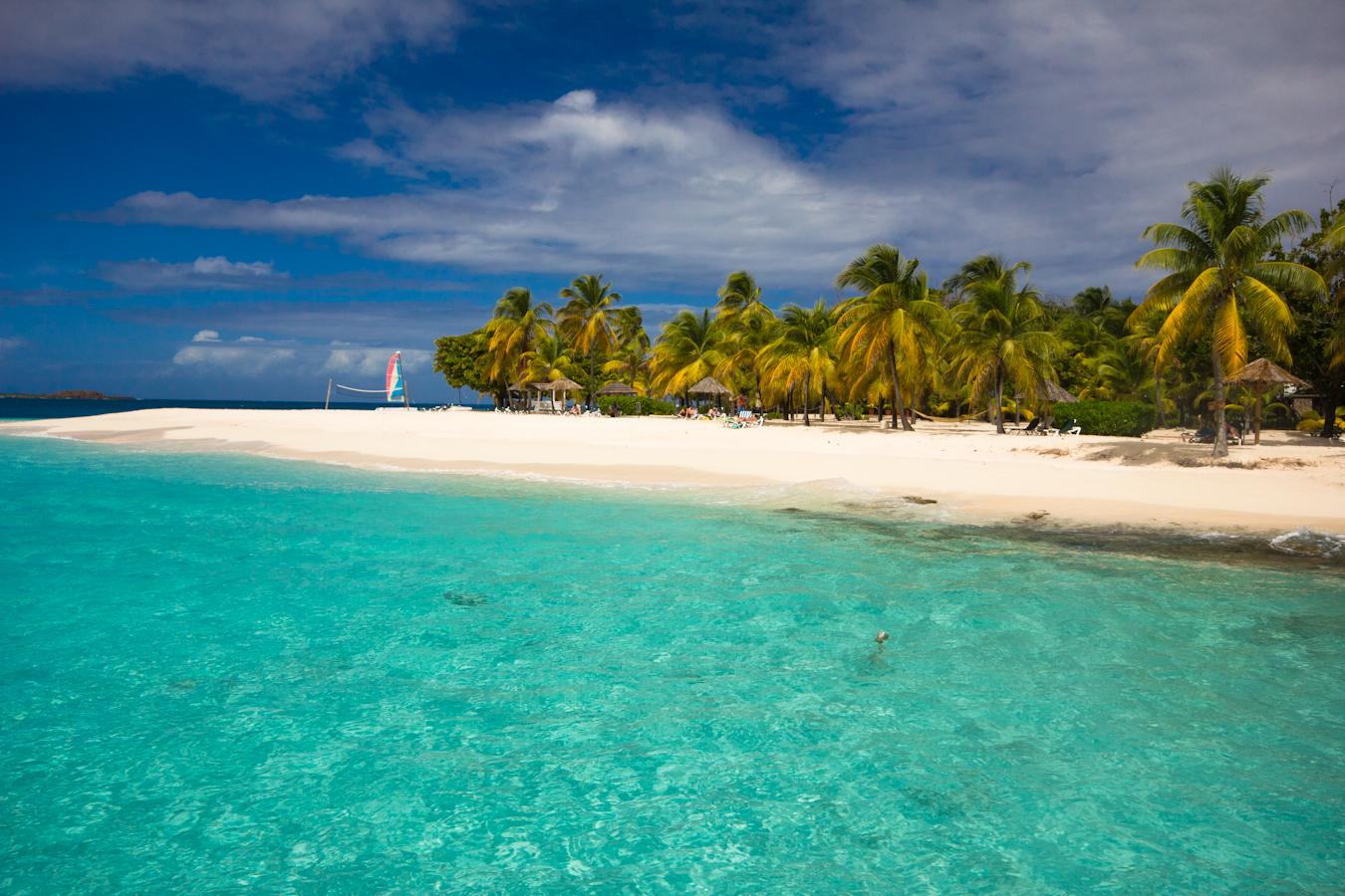 Noleggio Barche Palm Island - Navalia | Noleggia un Sogno