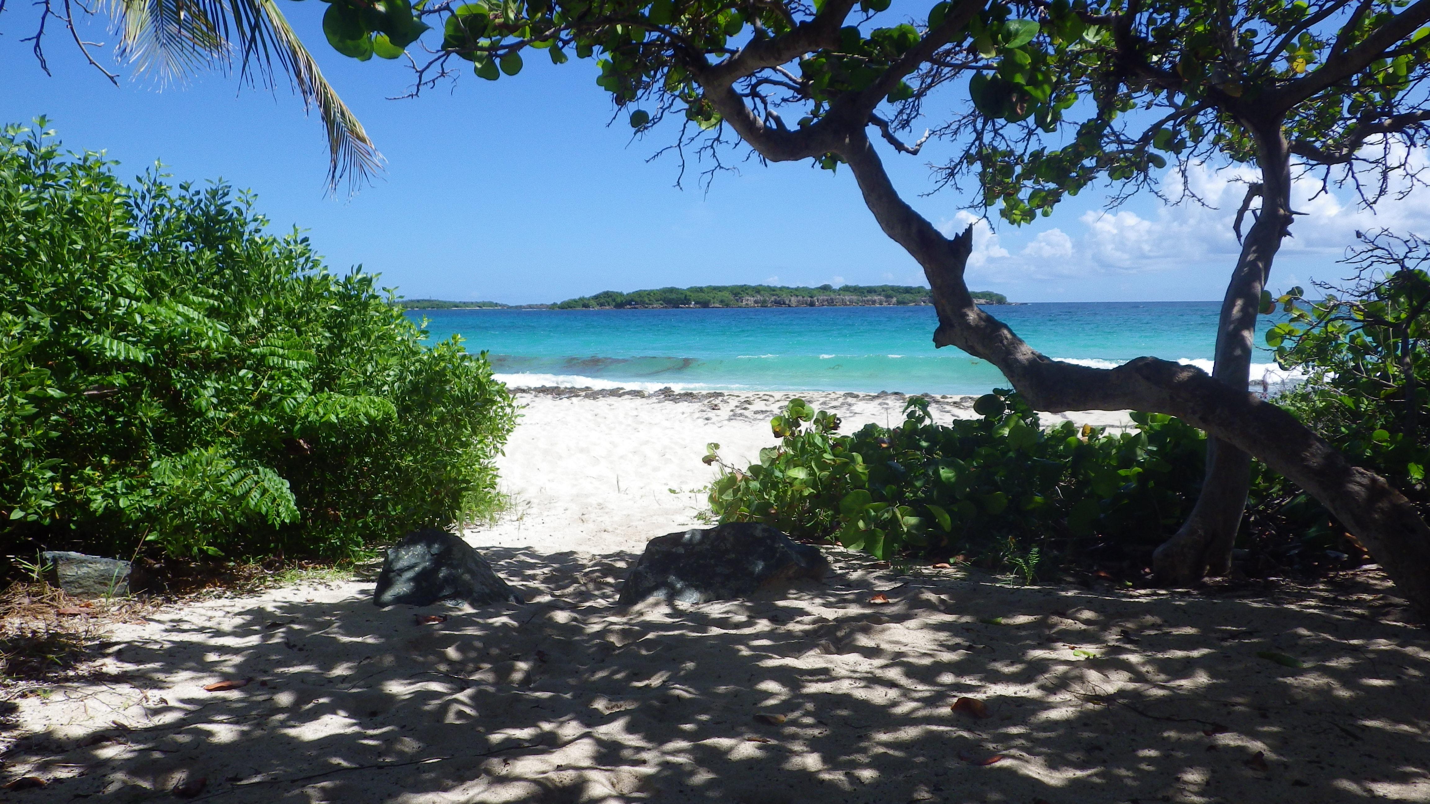 Noleggio Barche Isla Chiva - Navalia | Noleggia un Sogno