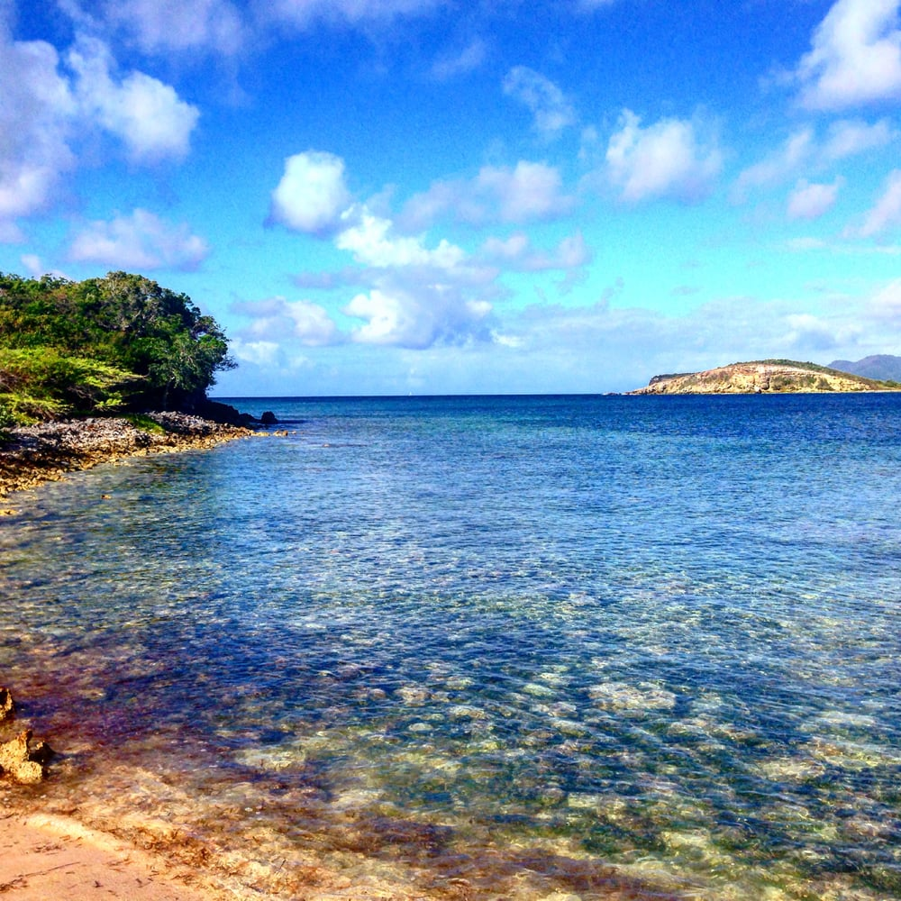 Noleggio Barche Sun Bay - Navalia | Noleggia un Sogno