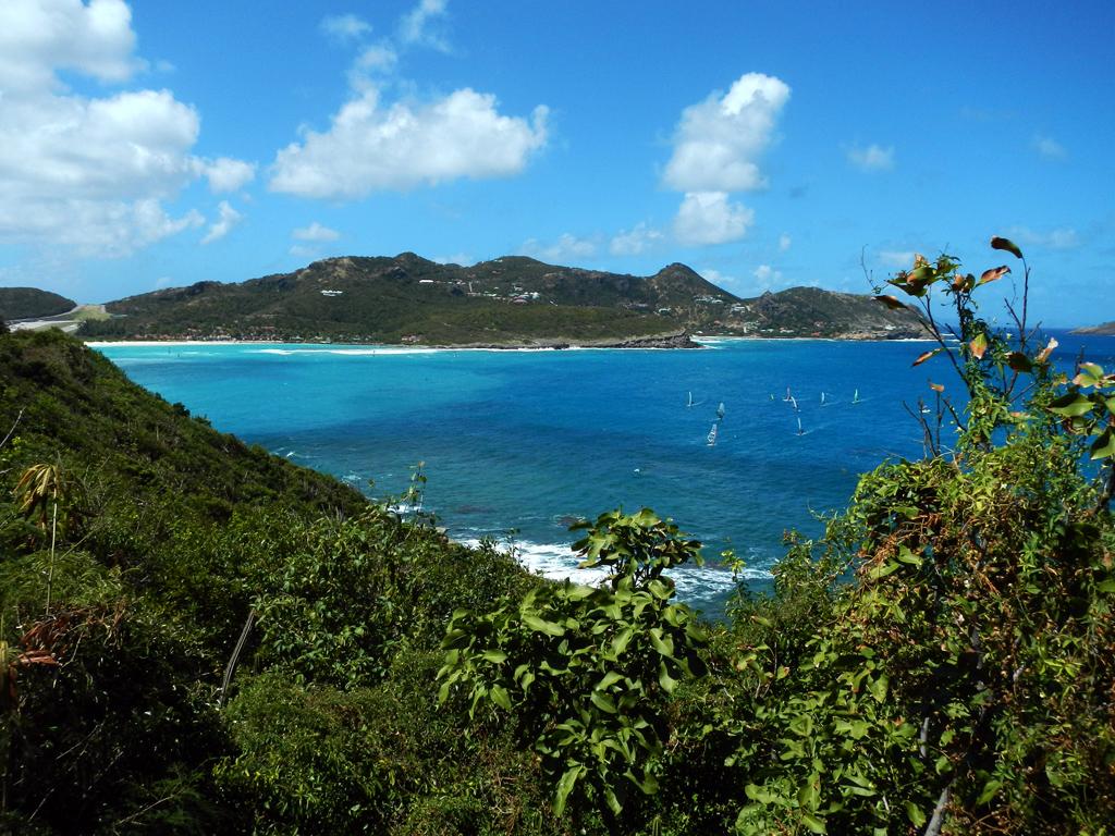 Noleggio barche anse de marigot isola di st martin for Isola di saint honore caraibi