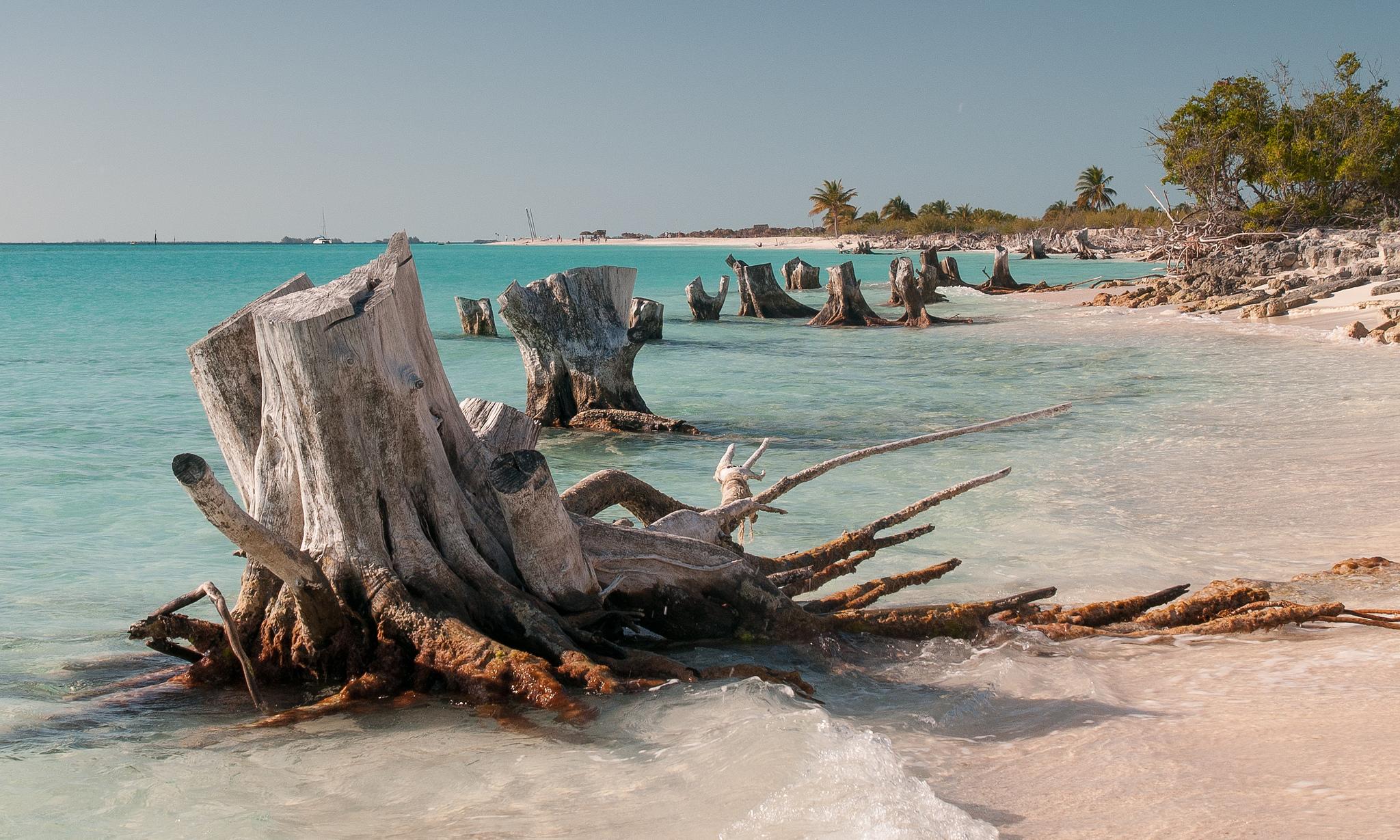 Noleggio Barche Cayo Guano - Navalia | Noleggia un Sogno