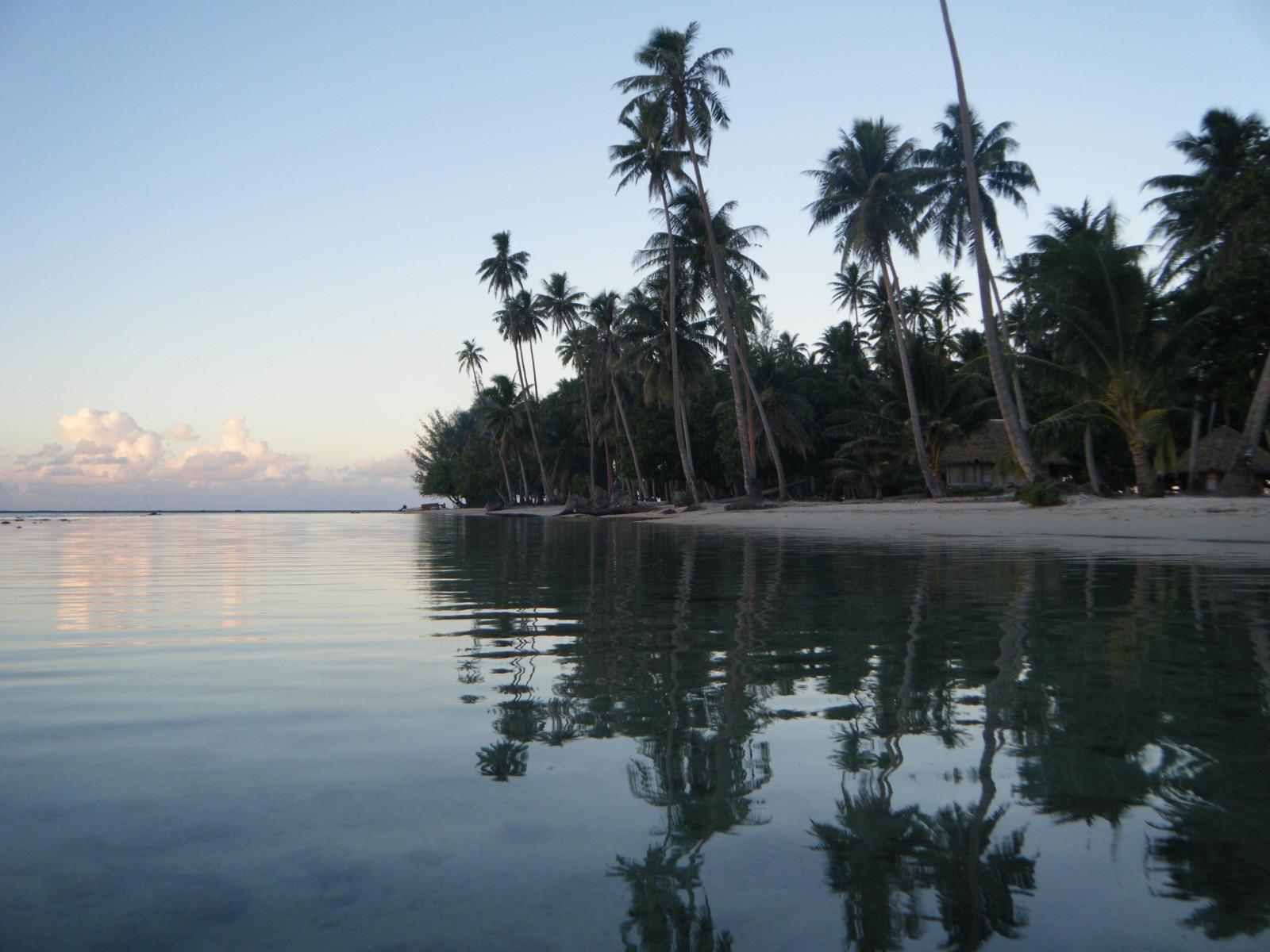 Noleggio Barche Faaroa Bay - Navalia | Noleggia un Sogno