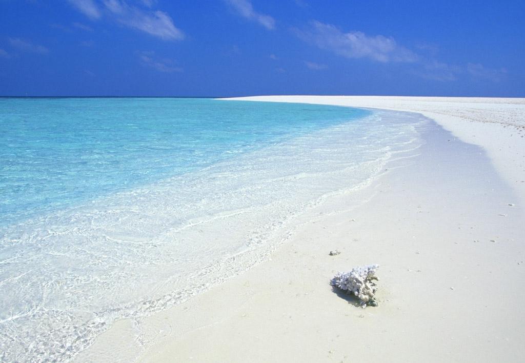 Noleggio Barche Kuda Bandos Sand Bank - Navalia | Noleggia un Sogno