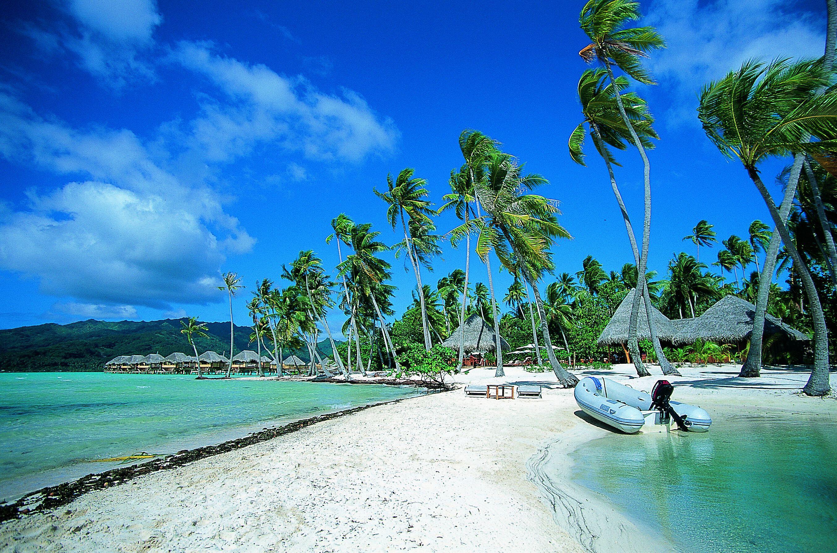 Noleggio Barche Motu Tau Tau - Navalia   Noleggia un Sogno