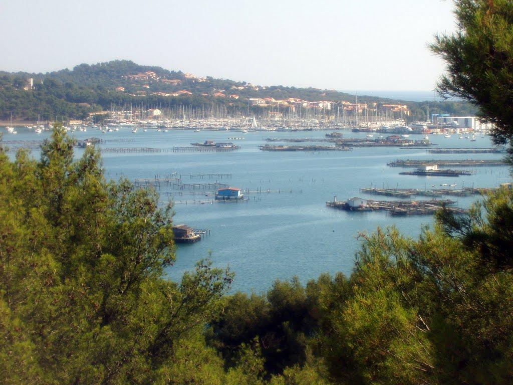 Noleggio Barche Port Pin Roland - Navalia | Noleggia un Sogno