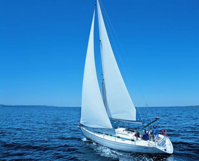 Navalia - Imbarcazione Vektor 361 1