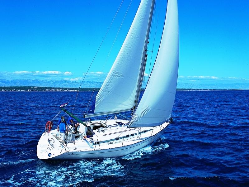 Navalia - Imbarcazione Vektor 401 1